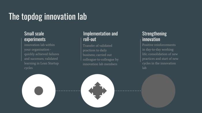 topdog_innovation_lab